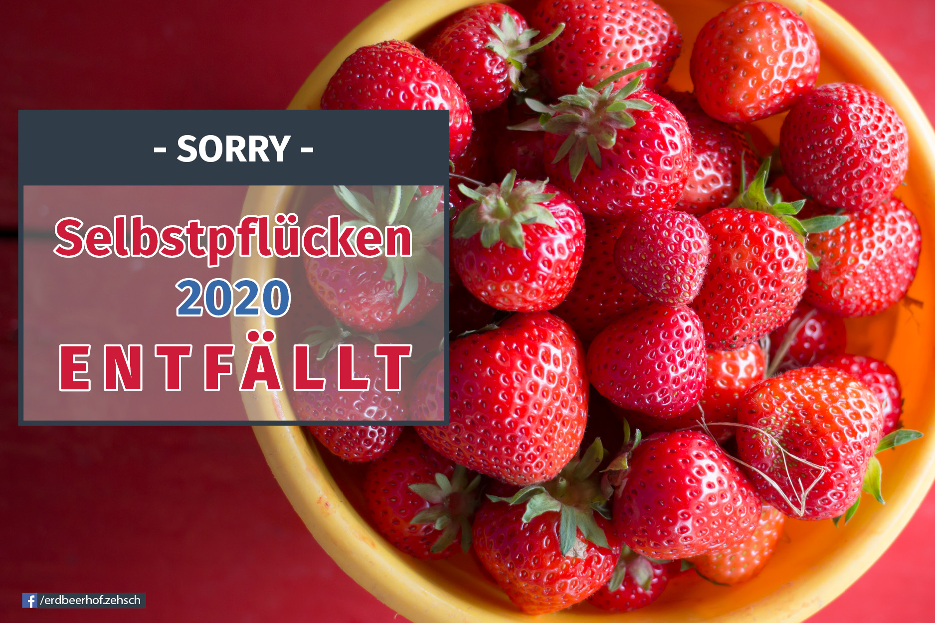 Erdbeerselbstpfluecke entfaellt
