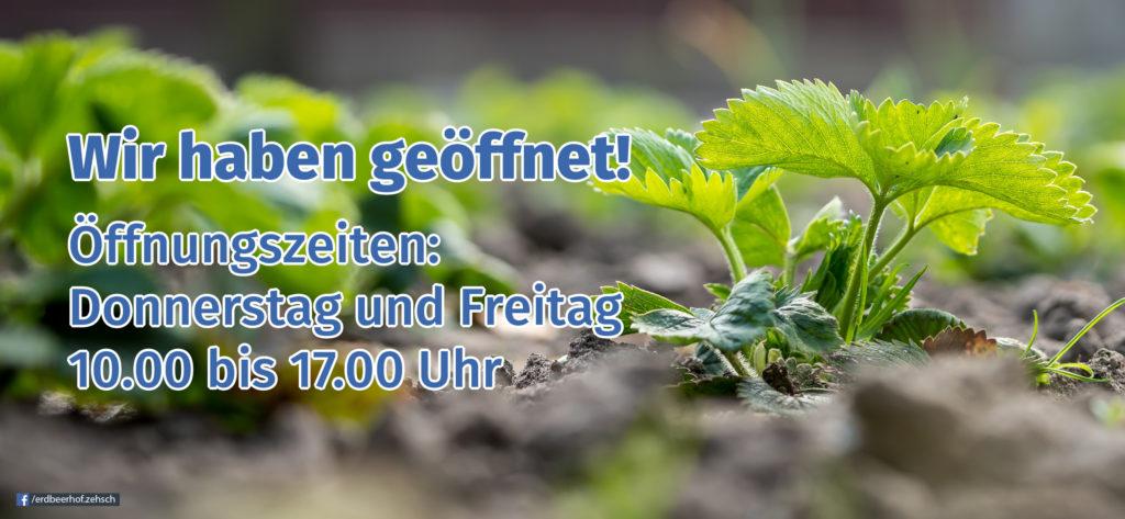 Öffnungszeiten zur Pflanzzeit (Erdbeerpflanzen und Beerensträucher)