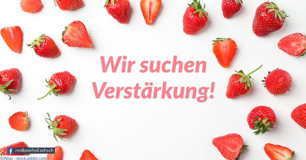 """Erdbeerfrüchte und Text """"Wir suchen Verstärkung"""""""